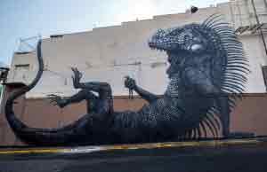 Street-Art-by-ROA-at-Los-Muros-Hablan-in-San-Juan-Puerto-Rico-12