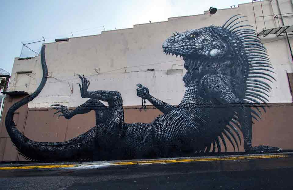 Street-Art-by-ROA-at-Los-Muros-Hablan-in-San-Juan-Puerto-Rico-12